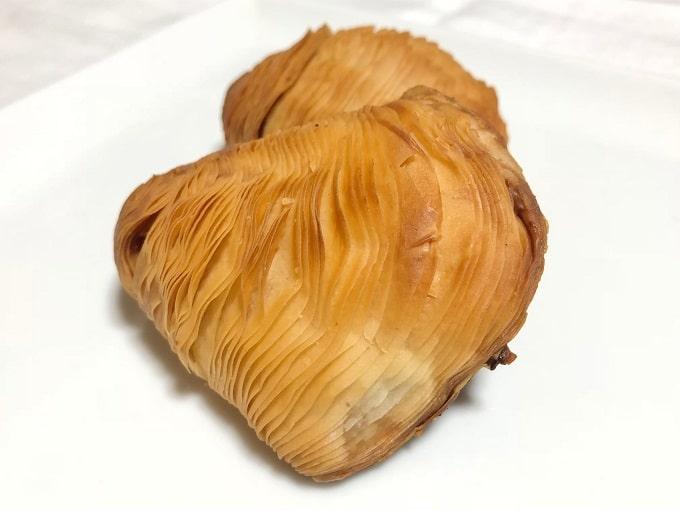 貝の形のスフォリアテッラ